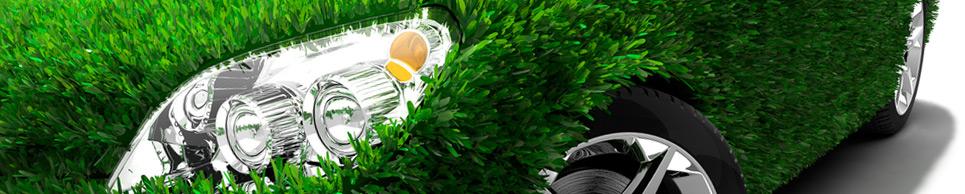 Eco-friendly Mobile Auto Detailing Business