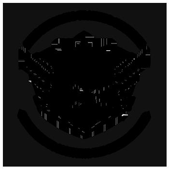 Detail King Car Detailing Training Institute Logo